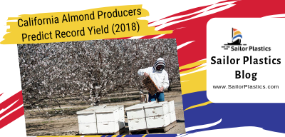 California Almond Producers Predict Record Yield – Good News for Beekeepers