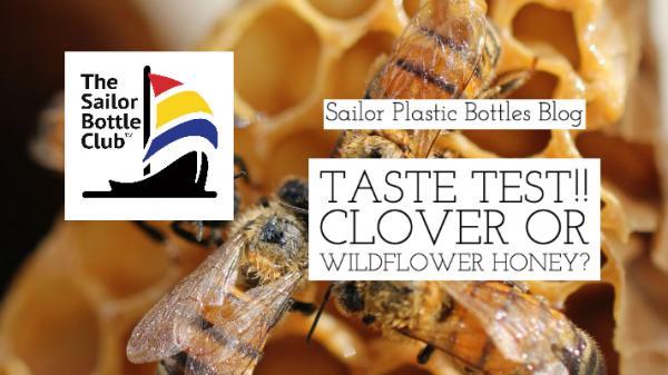Wildflower Honey vs. Clover Honey Taste Test