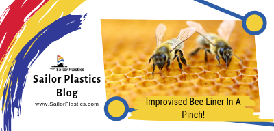Improvised Bee Lining Box In A Pinch