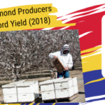 California Almond Producers Predict Record Yield – Good News for Beekeepers (2018)